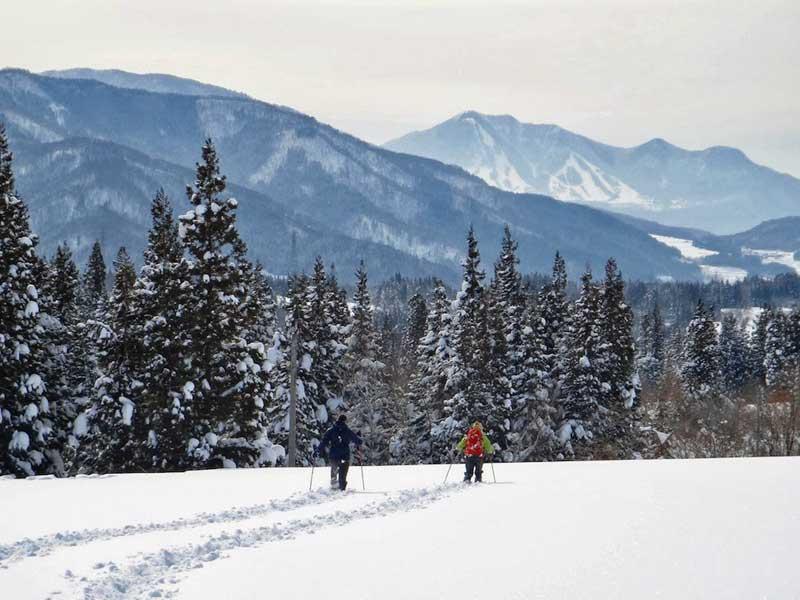 SCT Snowshoeing