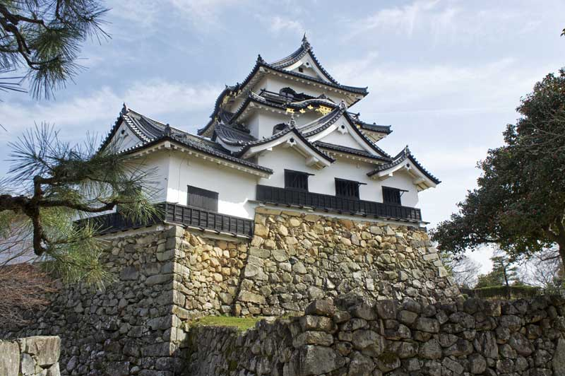 NW Hikone Castle