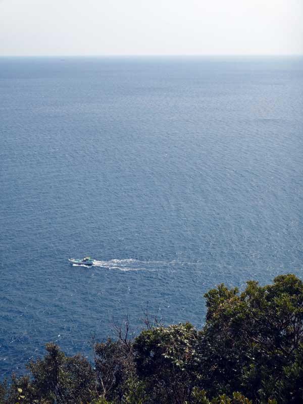 STP_pacific_ocean1.jpg