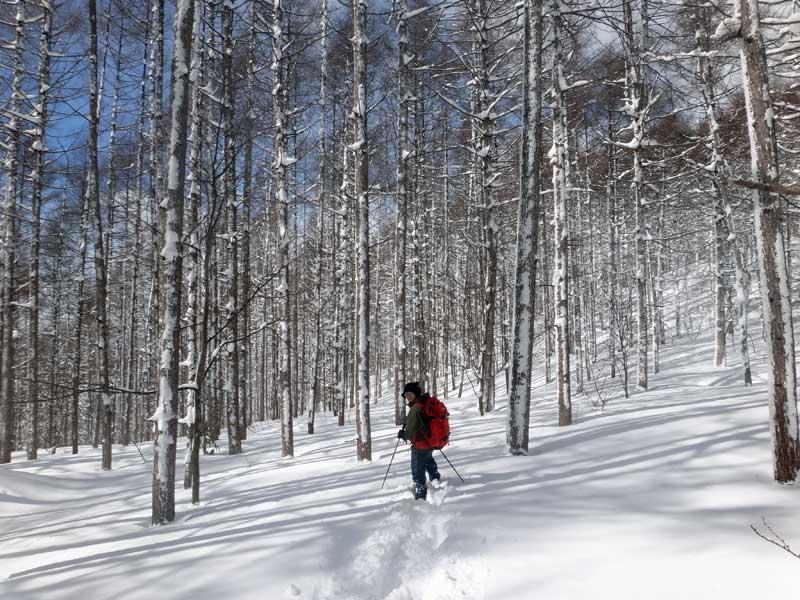SCT Snowshoeing 04