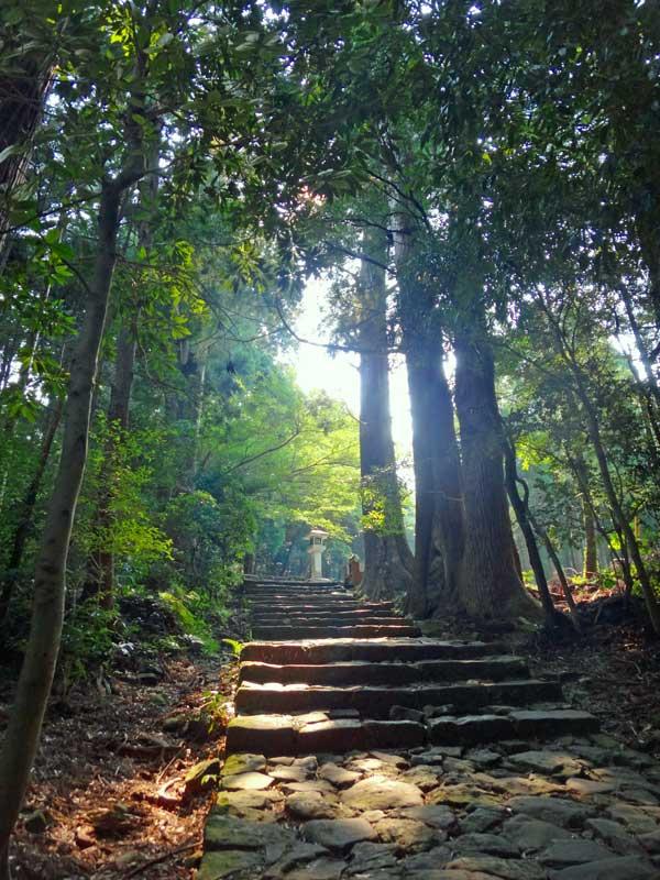KKP Trail 01