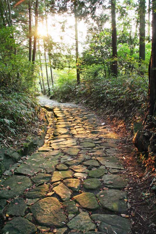 Nakasendo Way ishidatami ancient stone path