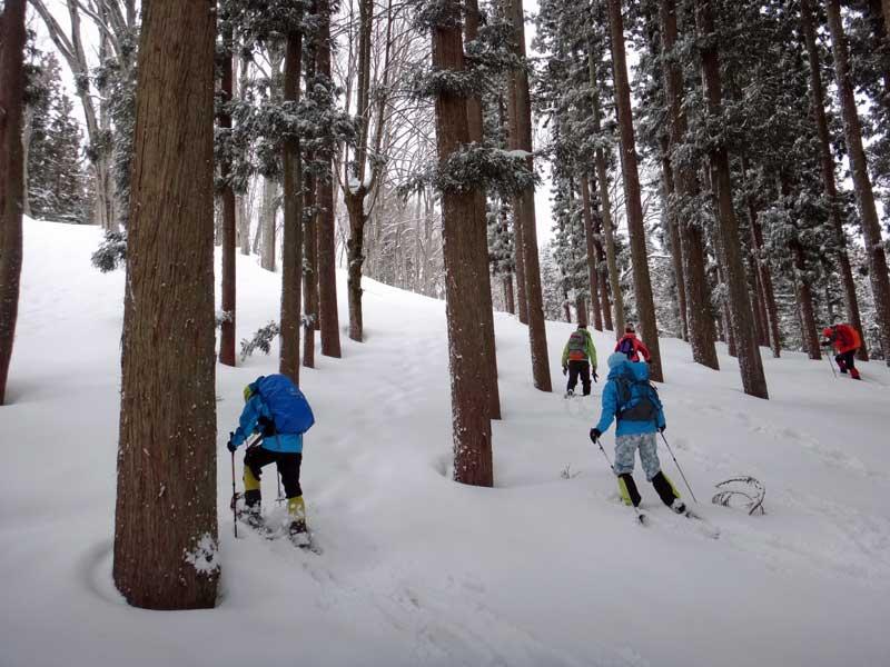 SCT Snowshoeing 03