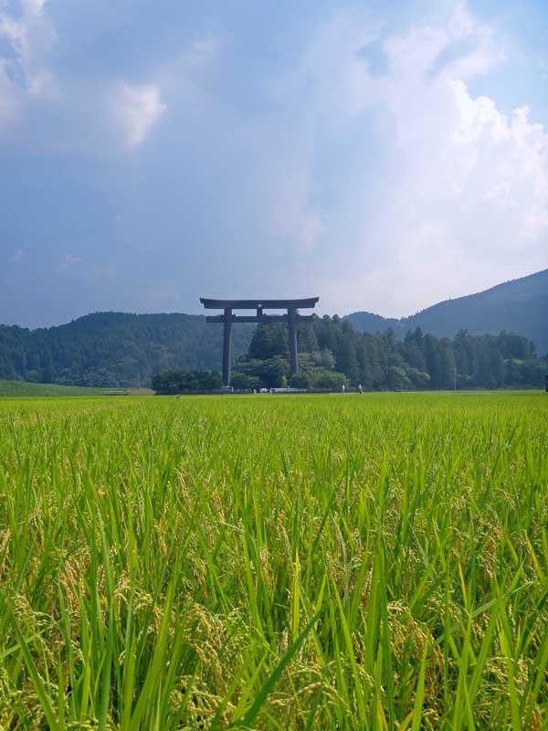 KKP Oyunohara torri gate