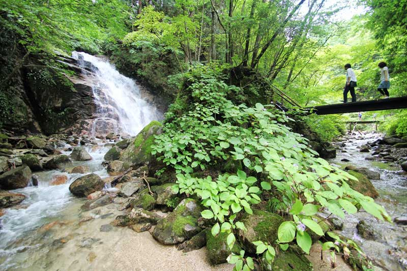 waterfalls near tsumago post town summer Nakasendo way forest trail