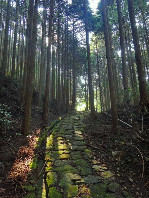 KKP Takahara ishidatami