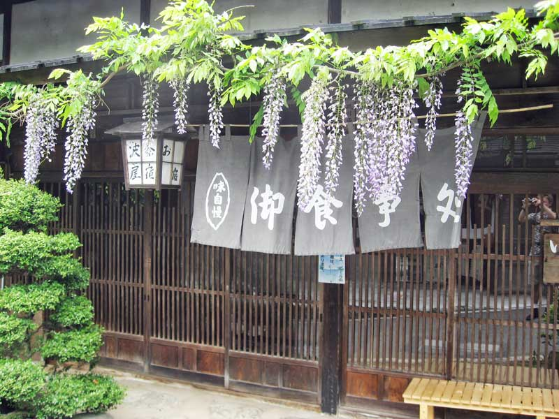 wisteria over wooden door