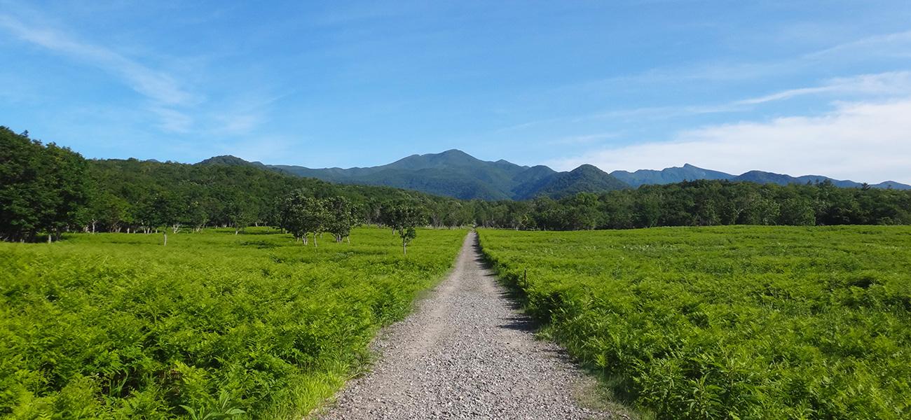 EHW_01_East Hokkaido Walk Header Image