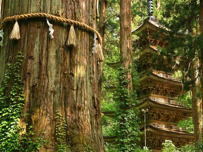 BT Hiraizumi pagoda