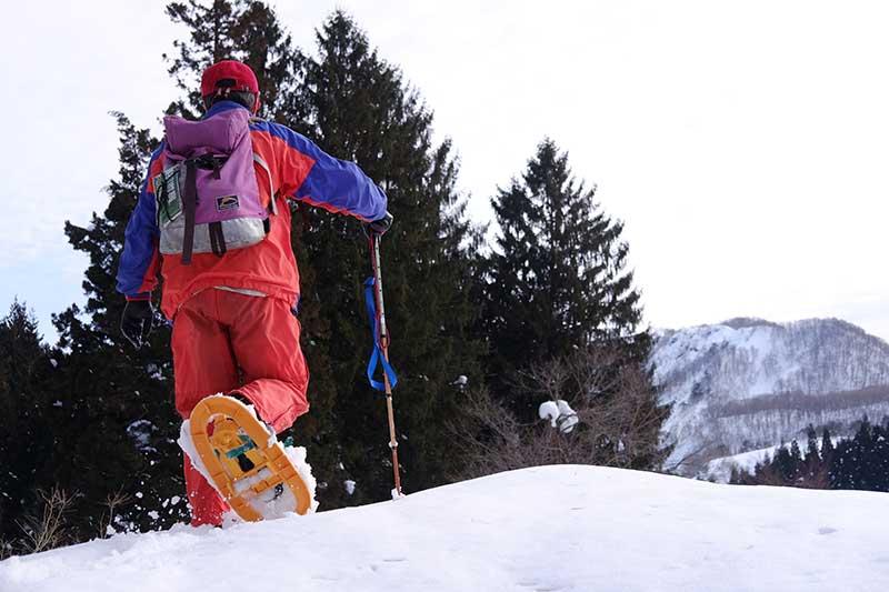 TSST_22_snowshoeing.jpg