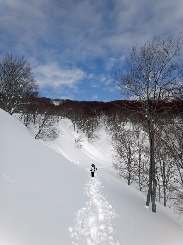SCT_snowshoeing1.jpg