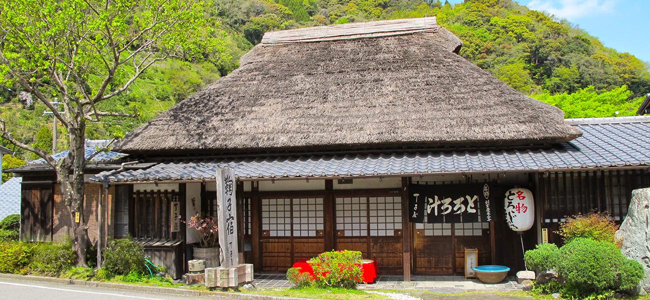 Tokaido_Trail_banner.jpg