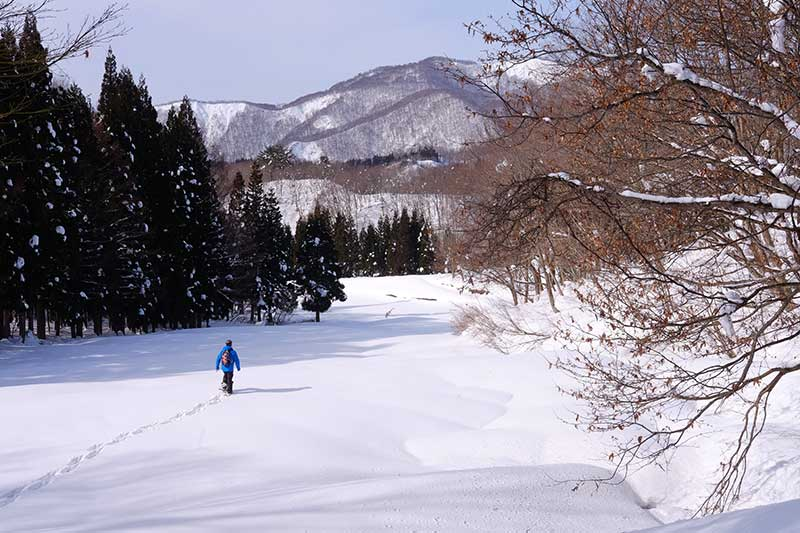 TSST_08_snowshoeing.jpg