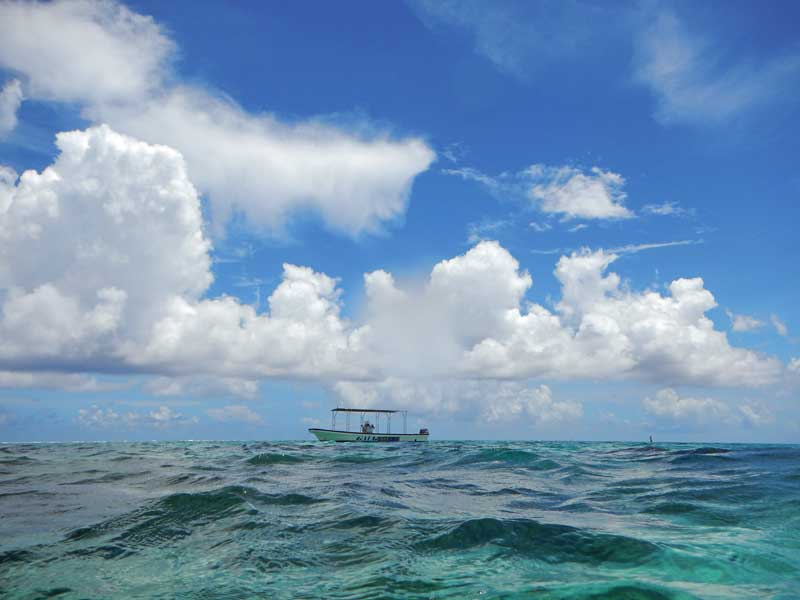 YOV_12_Iriomote sea