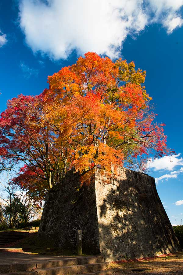 OHT_Okajo_castle_autumn_colours.jpg